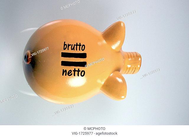 Piggy bank gross net - 01/01/2009