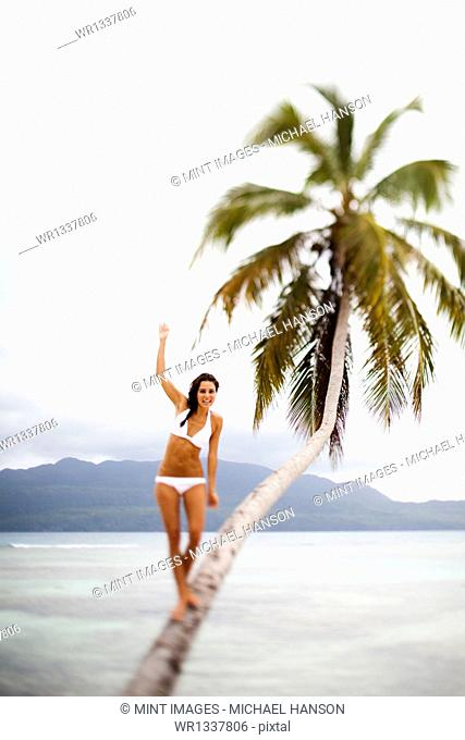 A woman balancing on a leaning palm tree in Las Galeras, Samana Peninsula, Dominican Republic