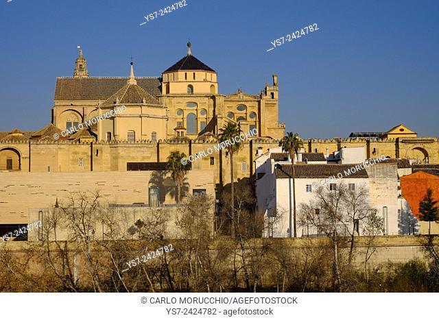 The Mezquita of Cordoba, Andalucia, Spain, Europe