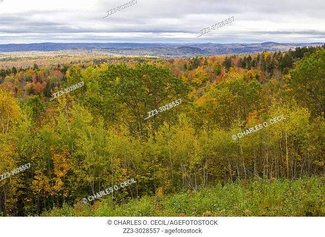 Vermont Fall Foliage from State Highway 9, West of Brattleboro