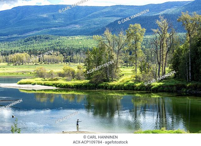 Fly fisherman, Shuswap River, Enderby, British Columbia, Canada