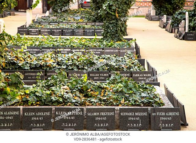 Gravestones in the cemetery. Great Jewish synagogue. Pest. Budapest Hungary, Southeast Europe