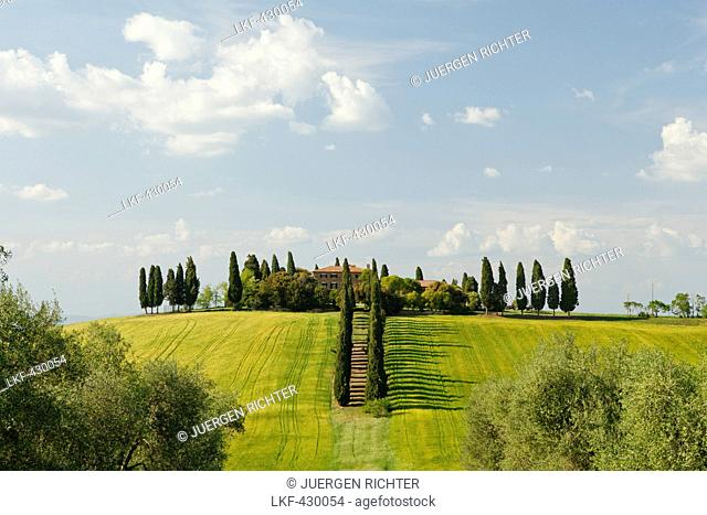 Tuscan country house and cypresses, Val d'Orcia, Orcia valley, UNESCO World Heritage Site, near San Quiico d'Orcia, province of Siena, Tuscany, Italy, Europe