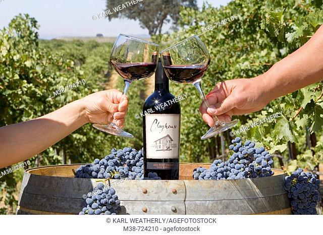 Couple toasting wine glasses, Clayhouse vineyard, Paso Robles, California, USA