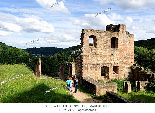 Hardenburg Castle at Bad Duerkheim, German Wine Route, Palatinate Forest, Rhineland-Palatinate, Germany, Europe