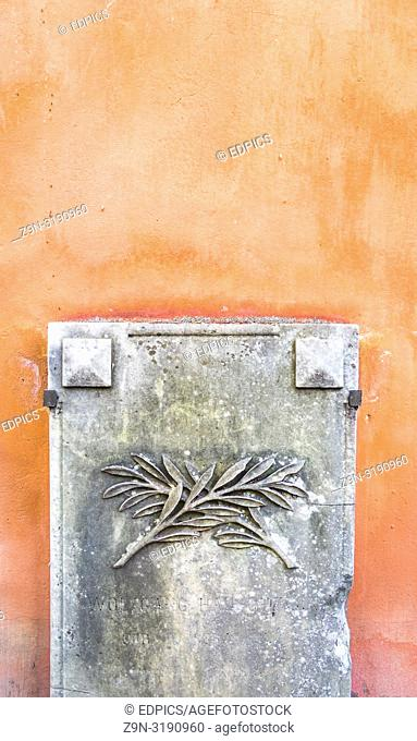 rhistoric stone with floral ornament against pastel colored background, rome, lazio, italy