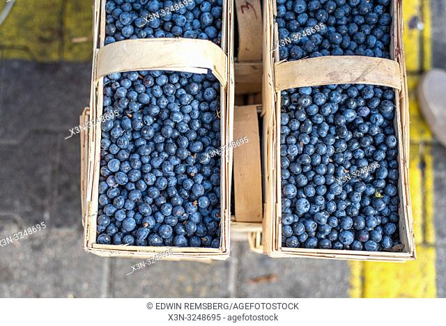 Two wooden baskets filled with blueberries (Vaccinium Cyanococcus) at the Bronisze Wholesale Market - one of the biggest fruits and vegetables markets in Poland