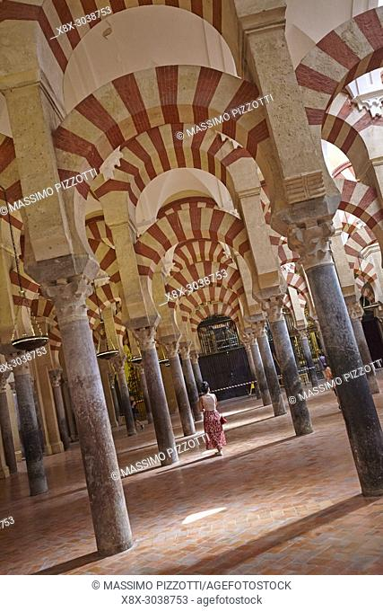 """The columns and arches of the Mosqueâ. """"Cathedral of Córdoba, Andalusia, Spain"""