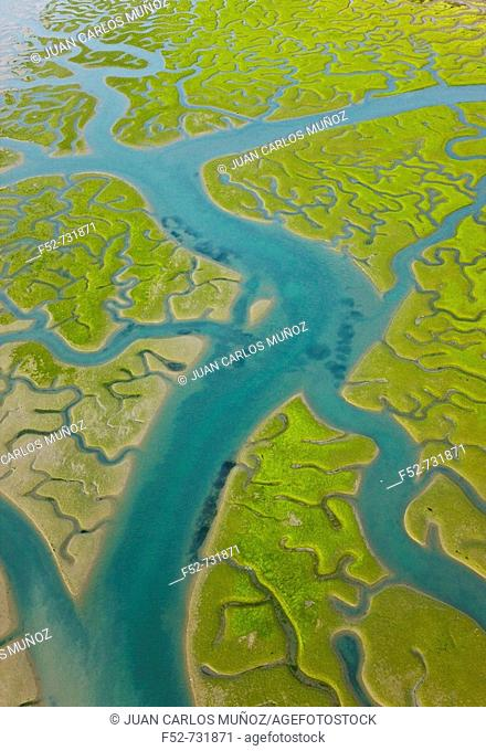 Aerial view on marshlands, Bahia de Cadiz Natural Park. Costa de la Luz, Cadiz province, Andalucia, Spain