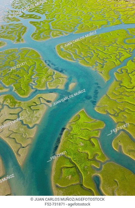 Aerial view on marshlands, Bahia de Cadiz Natural Park. Costa de la Luz, Cadiz province, Andalucia, Spain