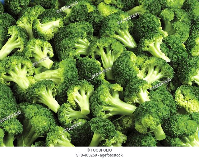 Broccoli florets Not available for exclusive usages