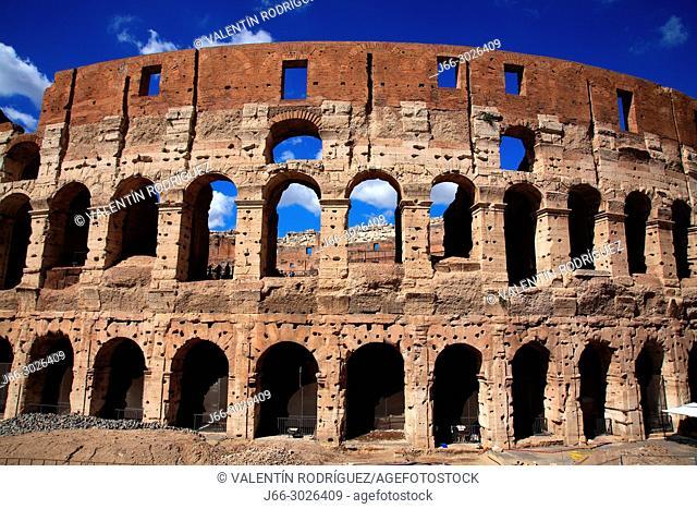 Colosseum. Rome. Italy