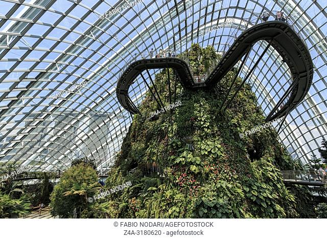 Inside the Cloud Forest Dome Gardens by the Bay in Singapore. On foreground the Marina Bay Sands hotel