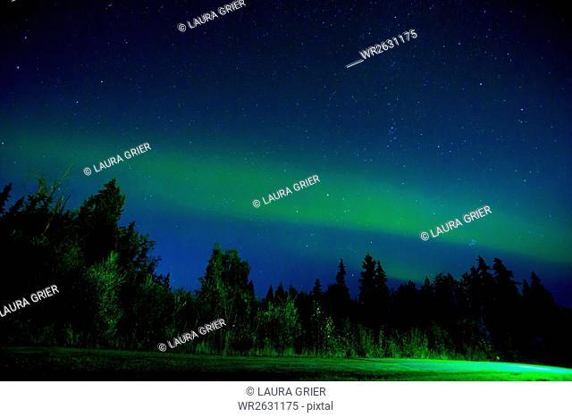 Aurora Borealis (Northern Lights) viewed from Denali Princess Wilderness Lodge, Alaska, United States of America, North America