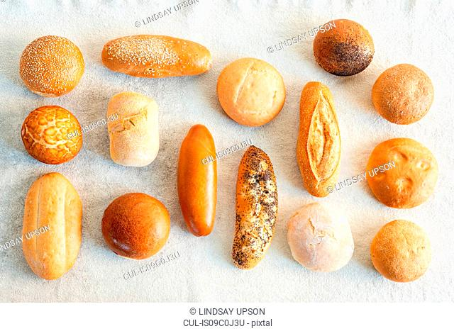Large variety of wholemeal and white bread rolls, overhead view