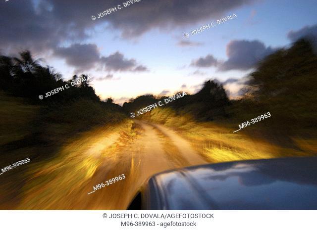 Driving on a dirt road. Bikini Atoll