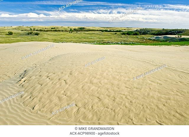 Sand dunes Great Sand Hills Saskatchewan Canada