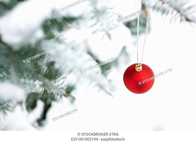new year concept with red bauble on tree covered with snow, selective focus
