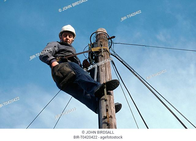 Electrical engineer working at top of telegraph pole