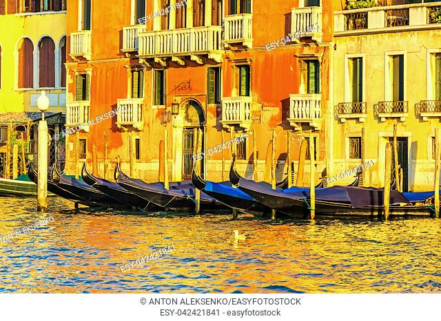 Gondolas near a venetian palace in the Grand Canal