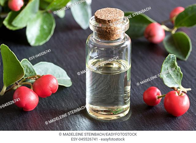 A bottle of wintergreen essential oil with wintergreen twigs on a dark background