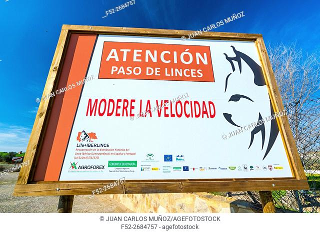 Life+IBERLINCE. Recovery of the historical distribution for Iberian Lynx (Lynx pardinus) in Spain and Portugal, Europe
