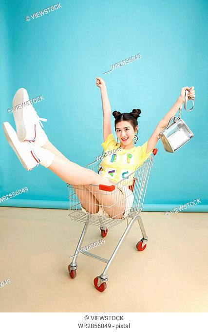The young girl is in the shopping cart