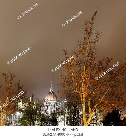 Hungarian Parliament and tree