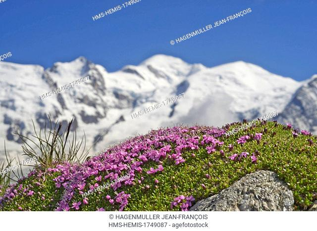 France, Haute Savoie, Chamonix Mont Blanc, Mont Blanc (4810m)