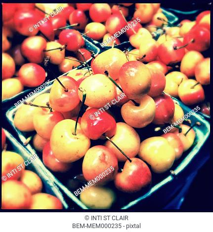 Close up of ripe cherries in cartons
