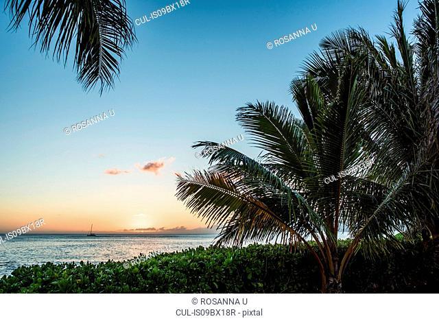 Sunset at Hale, Oahu, Hawaii