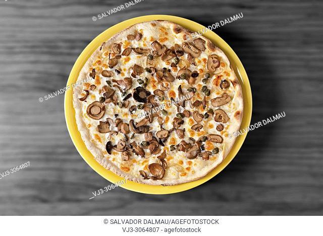 mushroom pizza, studio photography Girona, Catalonia, Spain