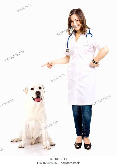 Beautiful young veterinary with a labrador dog, isolated over white background