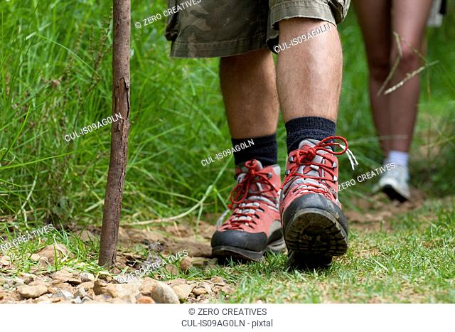 Hikers legs and walking stick