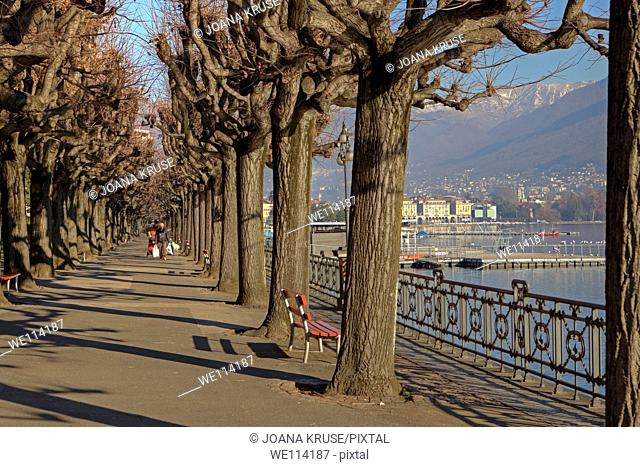 Waterfront of Lugano, Ticino, Switzerland, Lake Lugano along with winter sycamores
