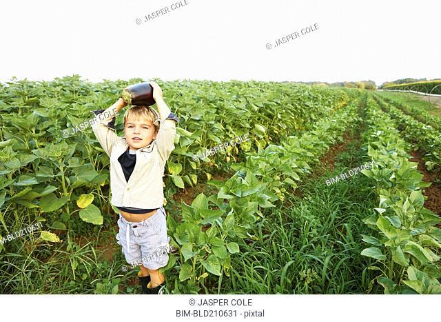 Caucasian boy picking vegetables in field