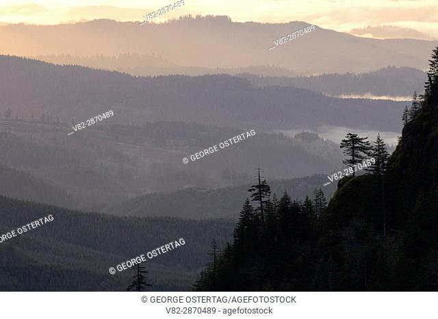 View from summit viewpoint, Saddle Mountain State Park, Oregon