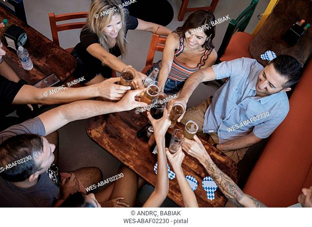 Friends socializing and clinking beer glasses in a bar