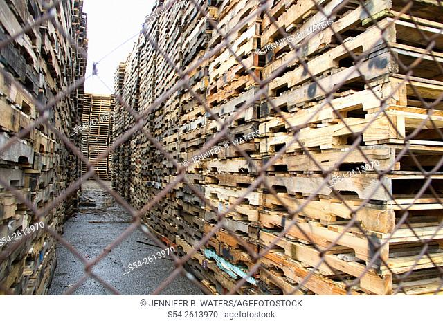 A huge pile of pallets behind a fence at the Port of Tacoma, Washington, USA