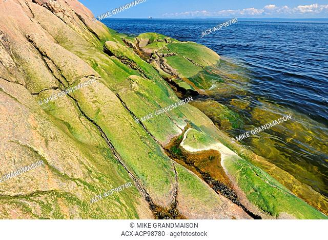Rocky shoreline along the Gulf of St. Lawrence Cap-de-Bon-De'sir Quebec Canada