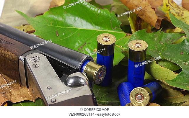 Shotgun, shells and autumn leafs
