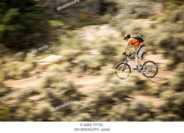 Man mountain biking on Jack's Trail at Hartman Rock Recreation Area, Gunnison, Colorado, USA
