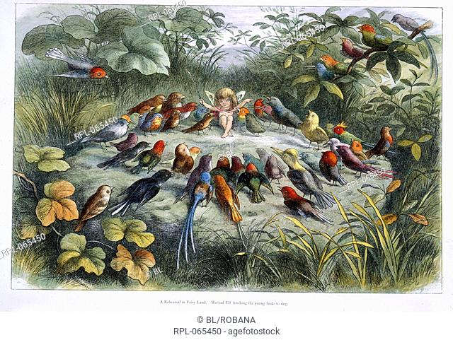 An elf and birds in Fairy Land a series of pictures from the elf world by Richard Doyle