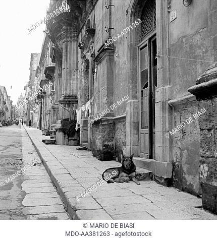 The neighbourhood called Ragusa Ibla . The buildings along a typical street of the neighbourhood called Ragusa Ibla. There's a a dog in the doorway of a house