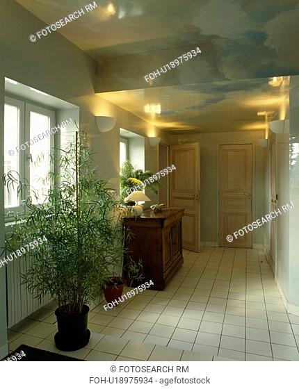 Large houseplant in hall with white tiled floor and paint effect trompe l'oeil ceiling