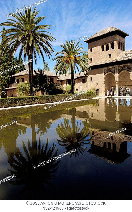 Pool in Partal Gardens, Alhambra. Granada. Andalusia, Spain