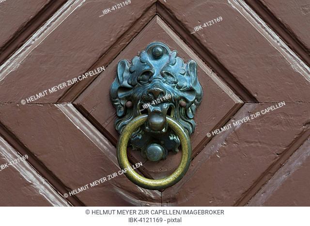 Lion head door knocker on an old door, Regensburg, Upper Palatinate, Bavaria, Germany