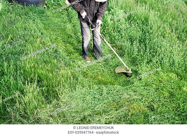Mowing green grass using a fishing line trimmer. Application trimmers