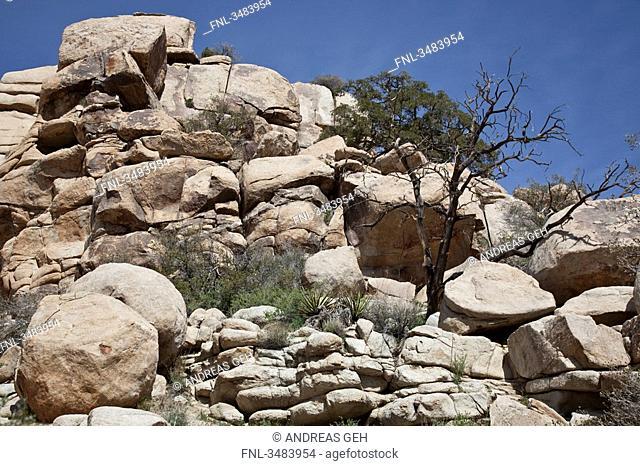 Rocks in the Joshua Tree National Park, California, USA, low angle view