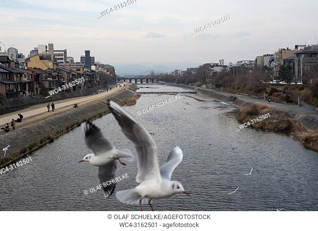 23. 12. 2017, Kyoto, Japan, Asia - A view of Kyoto's cityscape with the Kamo River
